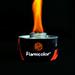Flamicolor orange
